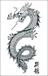 Tioman Dragon