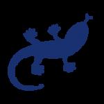 BHD-icon-lezard-blue