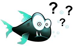 Blue Heanven Divers Tioman Malaysia Questions